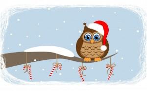owl-snow-christmas-art-wallpaper-1680x1050